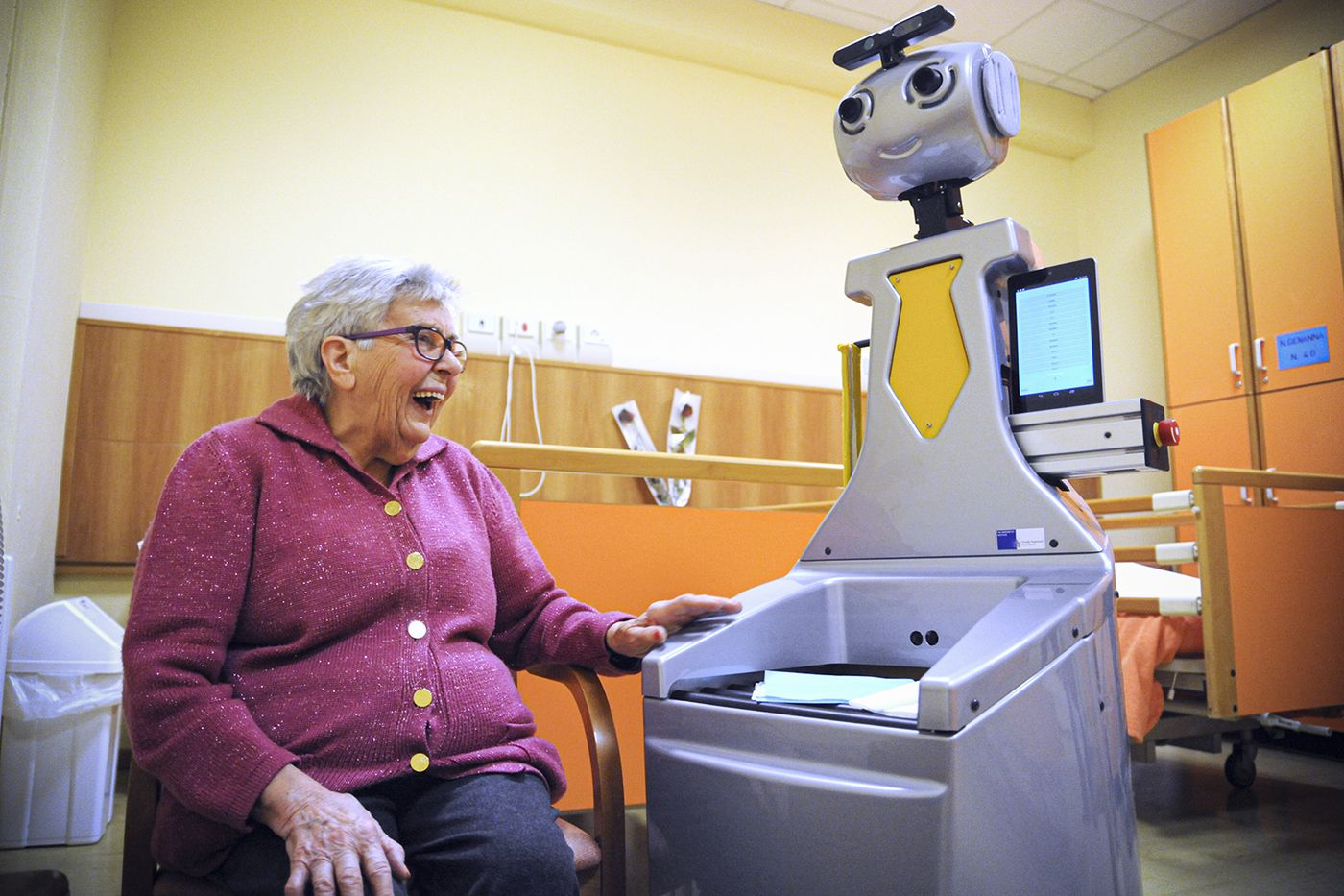 granny and the robot